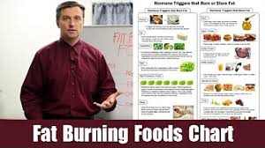 Fat Burning Food Chart Eric Berg Dr Berg Youtube