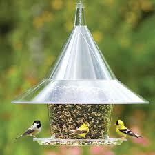 free 40 you squirrel bird feeder access you