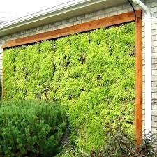living wall planter diy outdoor living wall planters indoor planter o living wall planter diy home