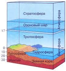 Границы биосферы Биология Реферат доклад сообщение краткое  Границы биосферы