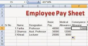 Downloadable Excel Spreadsheets Employee Pay Sheet Formulas In Microsoft Excel Perfect Computer Notes