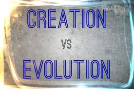 vs creation essay evolution vs creation essay