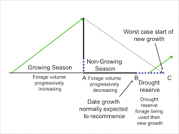 Preparing A Holistic Grazing Plan