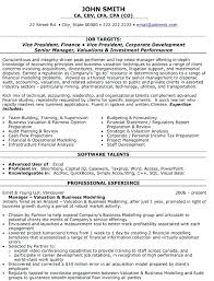 Resume Format For Finance Jobs Vice President Of Administration