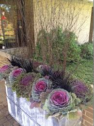 Great Fall Flower Pot Mixing Grasses Perennials And Fall Flowers Container Garden Ideas For Fall