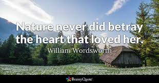 Friendship Betrayal Quotes Extraordinary Nature Never Did Betray The Heart That Loved Her William