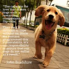 Quotes About Dogs Love