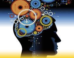 """Résultat de recherche d'images pour """"neurosciences"""""""