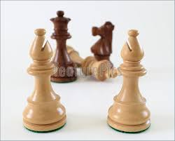 Image result for bishops chess