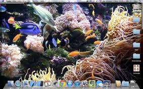 free desktop aquarium relaxing