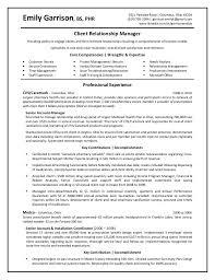 Sales management resume home