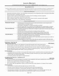Resume Format For Sales And Marketing Manager Awesome Hotel Sales