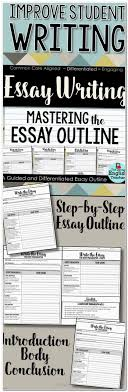 what is natural disaster essay relief