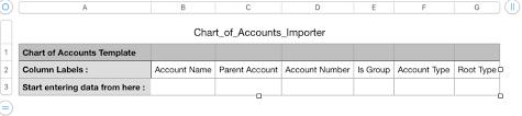 Chart Of Accounts Importer
