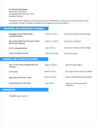 professional cv format doc - Curriculum Vitae Resume Format Doc