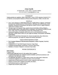 Summary Resume Template