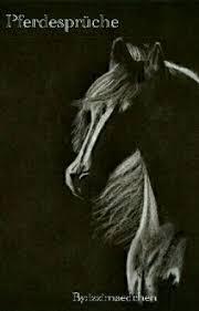 Pferdesprüche Vertrauen Wattpad