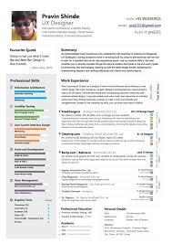 Resume Senior User Experience Designer Resume