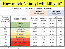 Gram Size Chart How Much Fentanyl Will Kill You Harm Reduction Ohio