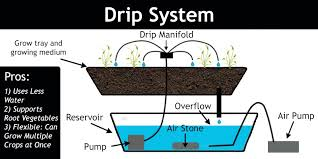 using the recovery drip system the unused nutrient solution is gathered back into the reservoir for reuse if you re using the non recovery version of the