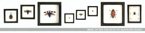 all glass picture frames double sided glass picture frame 8x10 glass clip picture frames ikea