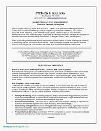 Example Of Resume Work Experience - Resume