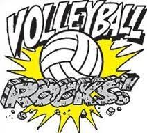 Image result for colorful volleyball clipart
