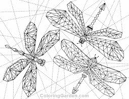 Small Picture Free printable geometric dragonfly adult coloring page Download