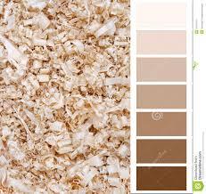 Beige Color Chart Chart Card Beige Color Stock Illustration Illustration Of