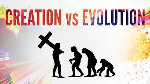 essays on evolution vs creation term paper service essays on evolution vs creation
