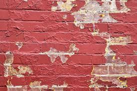 free photo grunge brick wall texture