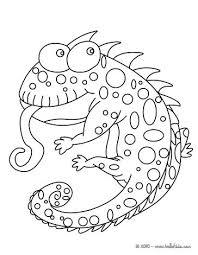 Chameleon Coloring Page Funny Chameleon Coloring Page Chameleon Pens