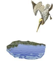 """Résultat de recherche d'images pour """"GIFS du Heron"""""""
