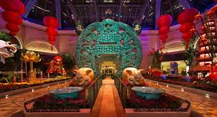 bellagio conservatory botanical gardens lunar new year 2019
