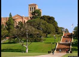 file ucla school of law 88 best ucla images on pinterest colleges ucla university and