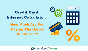 Calculator Credit Card Payment Credit Card Interest Calculator How Much Are You Paying The