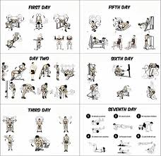 6 Day Work Out Plan With Day Off On The 4th Day Gym