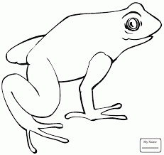 African Dwarf Frog amphibian coloring pages | coloring7.com