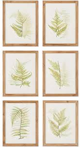 set of six framed ferns botanical wall art promo on framed fern wall art with these are so pretty set of six framed ferns botanical wall art