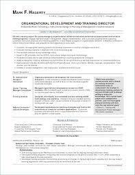Account Manager Sample Resume New Account Manager Resume Beautiful Free Sample Senior Executive Resume