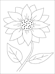 See more ideas about sunflowers and daisies, sunflower, sunflower pictures. Pin On Flower Pic
