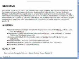 Objective On Resume Summary Objective Resume Example Resume Great Resume Objective 49