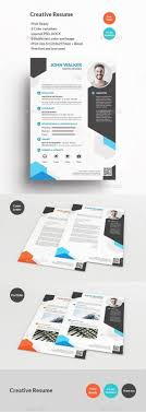 Resume Infographic Resume Infographic Creative Resume Template
