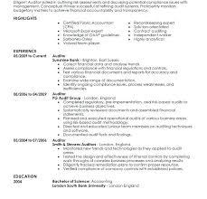 Internal Resume Sample Download Internal Auditor Resume Sample