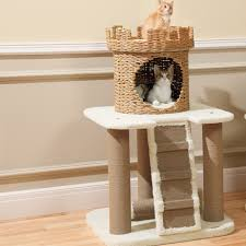 stylish cat furniture. Image Of: Contemporary Cat Trees Table Top Stylish Furniture S
