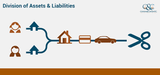 assets and liabilities division of assets and liabilities visual ly