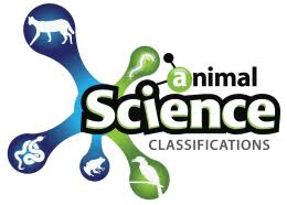 Master Of Applied Science In Animal Science Curriculum