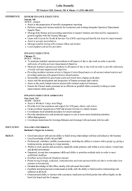 Finance Executive Resume Samples Velvet Jobs