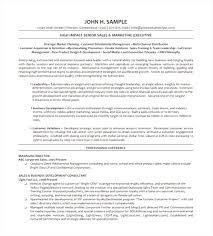 Executive Resume Template Word Top Executive Resume Template Microsoft Word Free 100 Top 76
