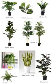 artificial plants for office decor. The Best Artificial Plants I Could Find For Office Decor